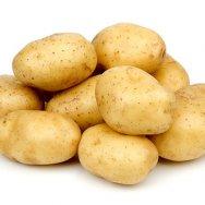 Картофель, Доставка морским контейнером