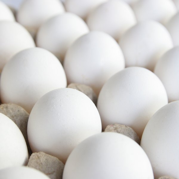 Махеевъ май-з Перепел.яйцом 50,5% (ведро) 800г/12шт