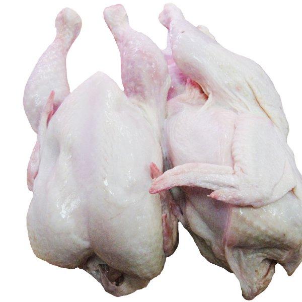 Блины фаршированные курица с грибами