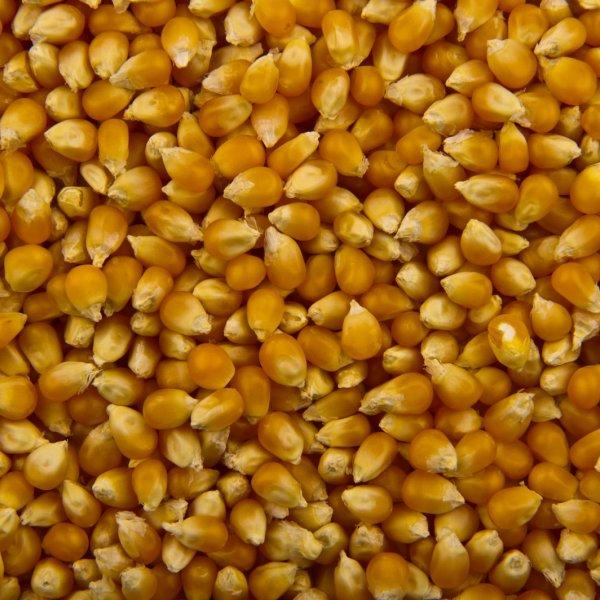 """Кукуруза сладкая """"SunFeel"""" (ж/б) 2650мл/6шт"""