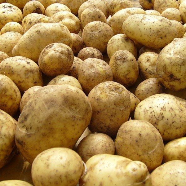 Картофельные хлопья