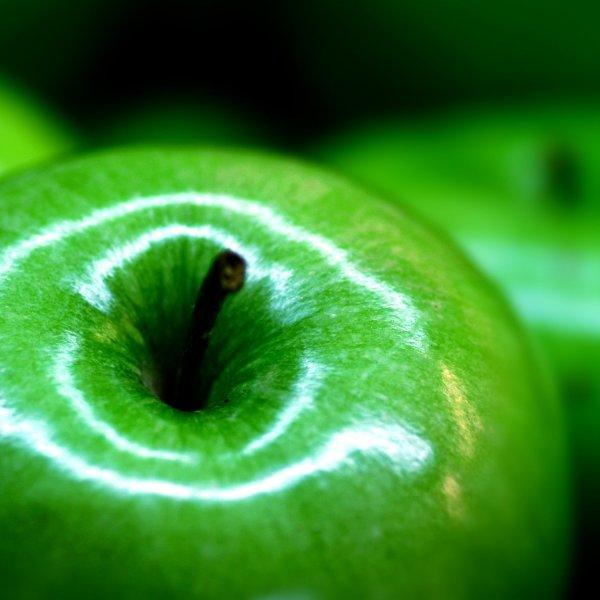 Сад реализует яблоки оптом сортов: Айдаред 65+, Симиренко 65+, Гала 60+