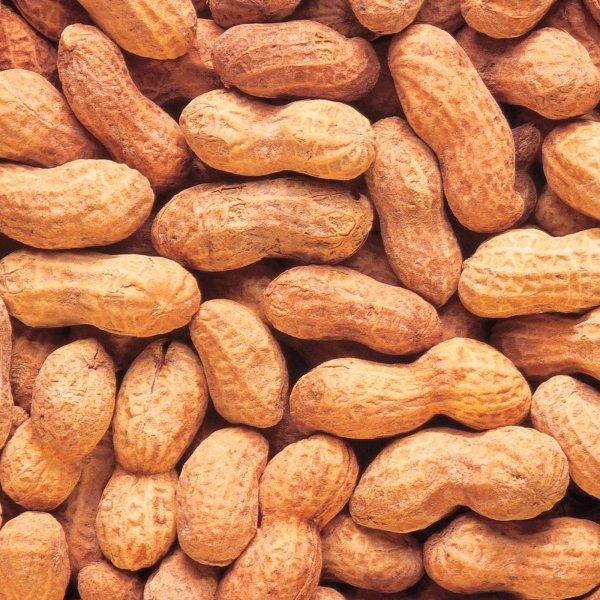 арахис(100гр в упаковке)