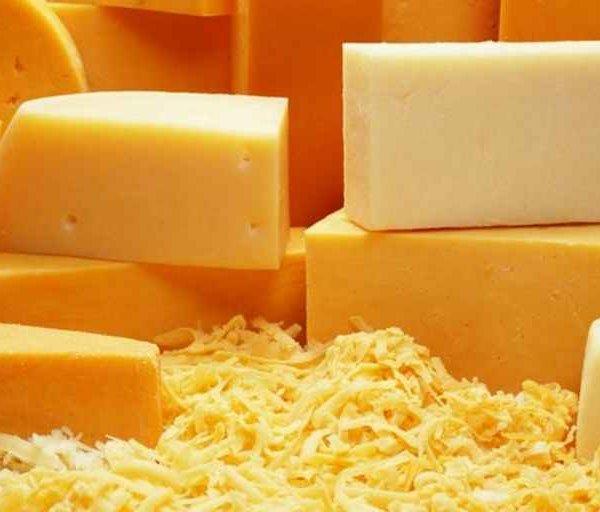 твердый сыр GRUYERE, Доставка морским контейнером