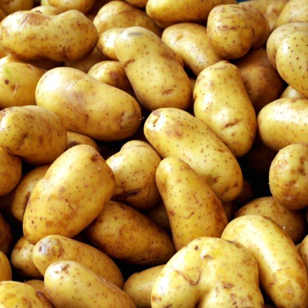 Картофель оптом по всей России