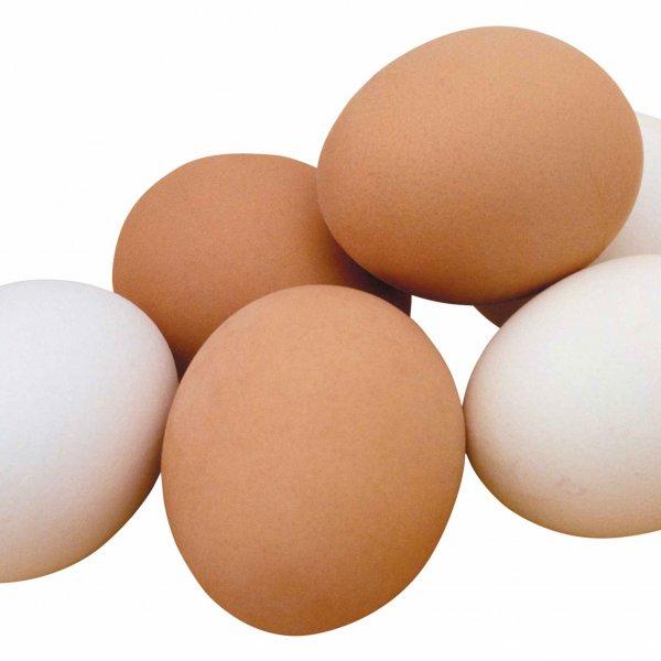Яйцо куриное от производителя С0, С1, С2