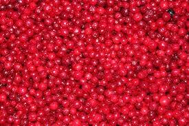 Клюква, (электронка), Вологод. ягода